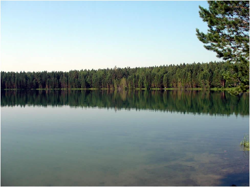 Озеро в Рязанской обл